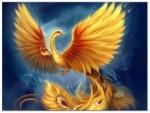Sammy_phoenix